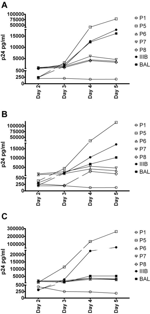 Relative replication fitness. The relative replication fitness was determined in PHA blasts from 3 healthy donors by measuring the p24 production produced by HIV reference strains BAL and IIIB or patient viruses (P1 is secondary controller, P5-P8 is from rebounders). (A): p24 production in ng/ml in donor 1. (B): p24 production in ng/ml in donor 2. (C): p24 production in ng/ml in donor 3.