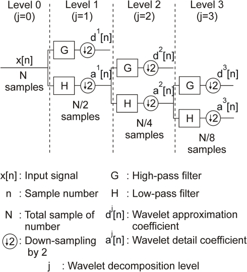 A three-level filter bank for discrete wavelet decomposition.