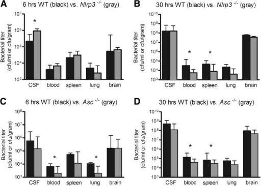 Bacterial outgrowth in blood, spleen, lung brain and CSF. Bacterial titers in WT vs., Nlrp3−/− mice at 6 (A) and 30 hours (B); and WT vs. and Asc−/− mice at 6 (C) and 30 hours (D) after induction of pneumococcal meningitis. Twelve mice per group were analyzed. Data are given as medians and 75th quartile. * P < 0.05.