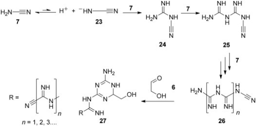 The oligomerisation of 7 and condensation with 6 to give cyclic aminal structures related to 27.