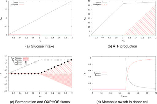 Solution of the minimal model of two cells coupled via a lactate shuttle.A lactate donor cell that maximizes ATP production is coupled to an acceptor cell. (a) Glucose intake for donor and acceptor as a function of total glucose supply. (b) ATP production as a function of the total glucose supply. The shaded area indicates that all values within that region are feasible. (c) Flux through fermentation fLDH (circles) and oxidative phosphorylation fox (crosses) as a function of the total glucose supply. (d) Fraction of ATP produced via fermentation (black) or via oxidative phosphorylation (red) in the donor cell as a function of the total ATP it produces.
