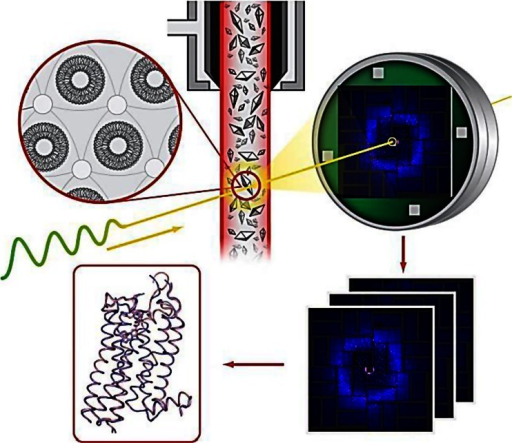 Schematic summary illustrating serial femtosecond crystallography of GPCRs with using lipidic cubic phase for microcrystal growth and delivery