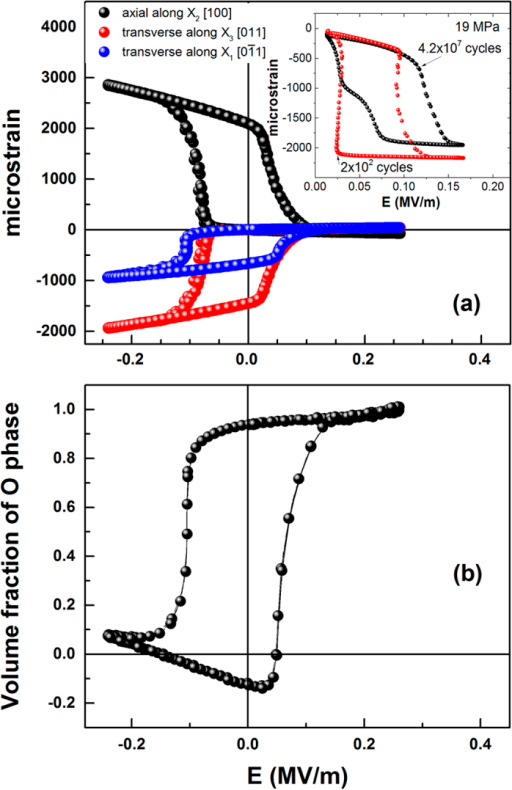 (a) Measured bulk strain at 21 MPa as a function of the electric field. Insert shows the electrically driven strain at 19 MPa at different cycles. It should be noted that electric field bias needed to induce transition varies with applied pre-stress. (b) Volume fraction of the orthorhombic phase based on the results of Fig. 4(b,c). Note that there are no free parameters; i.e. this is not a fit.