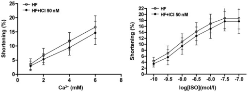 Reaction curve of cardiac muscle cells of rats with heart failure (HF) to Ca2+ and concentration of ISO.