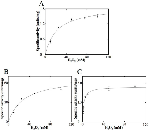 "Michaelis—Menten kinetics of the catalase activity of OxdAs.The reactions were carried out under the ""standard assay A"" conditions as described under ""Materials and Methods."" For all data points, values are means ± mean error. OxdA(WT) (A), OxdA(H320D) (B) and OxdA(H320A) (C)."