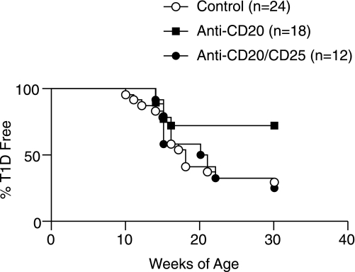 Coablation of Tregs abrogates the diabetes protective effects of selectively eliminating FO B cells in pre-IAA onset NOD mice. Anti-CD20 or control antibody treatment was initiated in 10-week-old NOD female mice typed to be IAA negative, with a subset also injected at 2-week intervals with a CD25-specific antibody to deplete Tregs. Compared with controls, diabetes development was significantly decreased only in NOD mice treated with anti-CD20 alone (P = 0.0175, Kaplan-Meier analyses). T1D, type 1 diabetes.