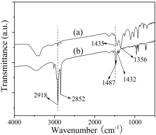 The FT-IR spectra of (a) Au NPs obtained from sample 4 and (b) CTABr.