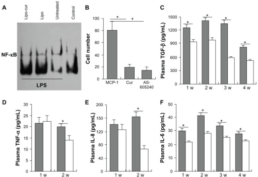 Lipo-cur inhibits the activation of macrophages and downregulates the serum levels of pro-inflammatory cytokines. The inhibitory effect of Curcumin on activation of macrophages was detected first. (A) Curcumin inhibited the activity of NF-κB of macrophages. (B) Curcumin blocked the migration of macrophages (MCP-1, Cur: Cur+MCP-1, AS605240: AS605240+MCP-1). Then, the serum levels of both the Lipo and Lipo-cur group for IL-6, IL-8, TNF-α, and TGF-β cytokine concentration were measured at the first month of RP, mice in each group were bled for serum at the end of week 1, 2, 3, and 4 after being treated with Lipo or Lipo-cur. (C) The level of TGF-β from the Lipo-cur treatment group and the Lipo group. (D) The level of TNF-α from the Lipo-cur treatment group and the Lipo group. (E) The level of IL-8 from the Lipo-cur treatment group and the Lipo group. (F) The level of IL-6 from the Lipo-cur treatment group and the Lipo group.Notes: Data are mean ± standard error of the mean; *denotes P < 0.05 between groups.Abbreviations: Cur, curcumin; IL, interleukin; Lipo, empty liposome; Lipo-cur, liposomal curcumin; MCP, monocyte chemotactic protein; NF, nuclear factor; TGF, transforming growth factor; TNF, tumor necrosis factor.