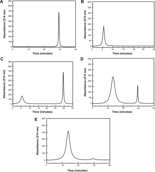 HPLC comparison of paclitaxel, SAMTA7, and the SAMTA7-paclitaxel combination mixed in different ratios.Notes: Shown are HPLC spectra for (A) paclitaxel, (B) SAMTA7, and the SAMTA7-paclitaxel combination at a ratio of (C) 1:1, (D) 1:5, and (E) 1:6. Samples were injected into an HPLC C18 column and detected at an ultraviolet wavelength of 214 nm. The retention time of paclitaxel and SAMTA7 was 29.6 minutes (A) and 5.4 minutes (B), respectively. A peak at 13.5 minutes was identified as an increased molar ratio of SAMTA7 and paclitaxel (D). At a molar ratio of 1:6, the peak of paclitaxel disappeared, while the appearance of a peak at 13.5 minutes indicated that SAMTA7 might interact with paclitaxel and form a stable complex (E).Abbreviation: HPLC, high-performance liquid chromatography.