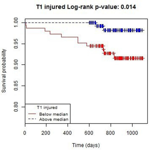 Kaplan-Meier survival plot (n = 288) for all-cause death or heart failure hospitalisation by T1 injured median.