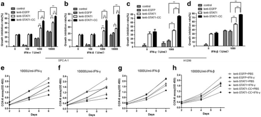 Overexpression of STAT1-CC improves IFN-induced growth inhibition in lung cancer cells. a, b SPC-A-1 cell growth inhibition rate was determined in each group treated with various doses of IFN-γ or IFN-β for 6 days (*P < 0.05, **P < 0.01). c, d H1299 cell growth was assayed in each group treated with IFN-γ 1000 U/ml or IFN-β 1000 U/ml for 2 days. e, f SPC-A-1 cell growth curve was plotted at various time points for each group treated with IFN-γ 1000 or 10,000 U/ml. g, h SPC-A-1 cell growth curves were plotted at various time points for each group treated with IFN-β 1000 or 10,000 U/ml