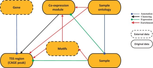 SSTAR data model. SSTAR data model consists of six classes, those represents the main 'categories' in SMW. The oval represents a class and the kind of the data stored. Relationship between any two categories is represented as an arrow. The direction of the arrow indicates which of the two classes stores the relationship (indicated by the end of the arrow) as a class attribute. The head and color of the arrow indicates the type of relationship.