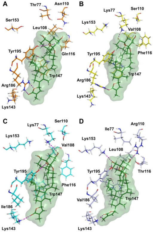 Protein-ligand interactions in the docking complexes of 20-meSPX-G (green) with four nAChR subtypes. (A) human α7 (orange, α7-α7 interface); (B) human α4β2 (yellow, α4-β2 interface); (C) human α3β2 (cyan, α3-β2 interface); and (D) Torpedo α12β1γδ (light blue, α1-δ interface). Only amino acids interacting through hydrogen bonds with the ligand or involved in toxin's subtype selectivity, and in the sequence alignment, are shown. The numbering of amino acid residues is the same as in [21].