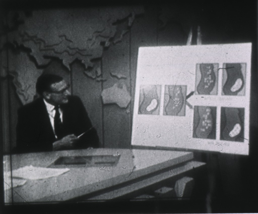 <p>Dr. William Pollack as seen on the &quot;Today&quot; show, Oct. 23, 1967.</p>