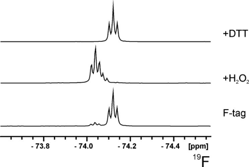 Fluorine-19 NMR spectra of compound 6 stored under aerobic conditions and treated with H2O2 or with DTT.