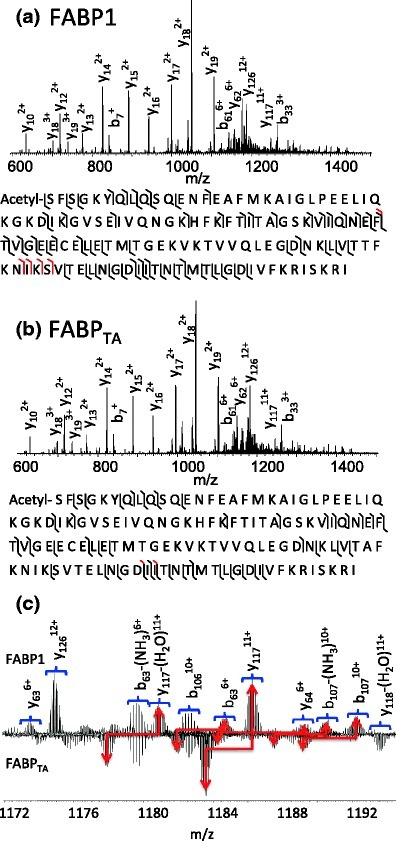 CID mass spectra obtained from +15 ions of (a) FABP1 and (b) FABPTA following LESA of human liver sections. Insets: observed sequence coverage: b/y ions are shown in black and a ions in red. (c) Enlarged region showing m/z 1172–1193