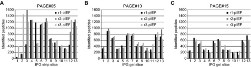 Distribution of identified peptides across the IPG strip from pIEF analyses of tryptic peptides from the same PAGE subfraction of three replicate PAGE lanes.