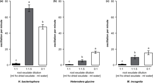 Low root-exudate concentration has a dual effect on nematode activity. (A) The number of oscillations per minute was significantly increased when the EPN Heterorhabditis bacteriophora was exposed to 1.5×-diluted exudates (grey bar) as compared to those in water (white bar). The original (1×) concentration of exudate induced almost complete quiescence in the exposed EPN. (B) The plant-parasitic nematode Heterodera glycine oscillation counts were higher in diluted exudate as compared to the original concentration. Whereas quiescence induction was incomplete at low concentration, the plant-parasitic nematode oscillation activity was still almost 3-fold lower than observed in water alone. (C) A similar pattern was observed for the plant-parasitic nematode Meloidogyne incognita. Letters indicate statistical differences. Bars indicate SEM.