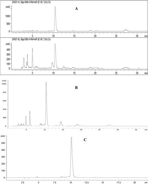 HPLC/DAD analysis of extract from Xinjiang Coreopsis tinctoria. HPLC chromatographic profile of Coreopsis tinctoria extracts. (A) Total Coreopsis tinctoria extracts from dry flower top (B) total flavonoid at 348 nm. (C) the major compound marinin at 348 nm.