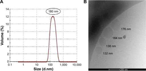 Droplet size analysis.Notes: (A) DLS results for Nano-PSO and (B) cryo-TEM image of Nano-PSO.Abbreviations: DLS, dynamic light scattering; PSO, pomegranate seed oil; cryo-TEM, cryogenic transmission electron microscope.