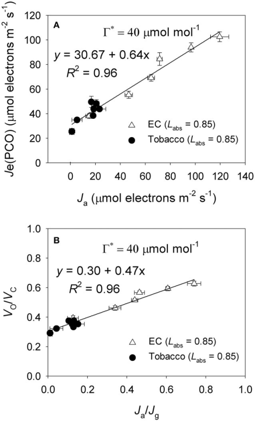 (A) The value of Je(PCO) as a function of Ja (electron flux for alternative electron sinks) for leaves of Eucalyptus camaldulensis and tobacco; (B) The value of Vo/Vc as a function of Ja/Jg for leaves of Eucalyptus camaldulensis and tobacco. Data were obtained from light response curves (light intensities higher than 300 μmol photons m−2 s−1) measured at 25°C and 400 μmol mol−1 CO2. Values are means ± SE (n = 4). The coefficient of correlation (r) and significance of correlation (P) are 0.98 and <0.0001 for Figure 6A, respectively. The coefficient of correlation (r) and significance of correlation (P) are 0.98 and <0.0001 for Figure 6B, respectively.