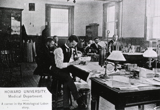 <p>Six male students at work in the histology laboratory, two looking through microscopes.  One of the students is black.</p>