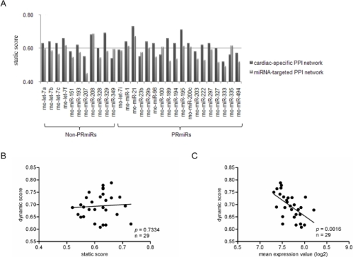 Results of static and dynamic network analyses.A. Static scores of the 29 dysregulated miRNAs in myocardial infarction.                            B. Correlation between static score and dynamic score. C. Correlation                            between average target gene abundance (log2) and dynamic score.                            non-PRmiR, dysregulated miRNA in myocardial infarction which expression                            could not be reversed by propranolol; PRmiR, propranolol-reversed                            miRNAs.