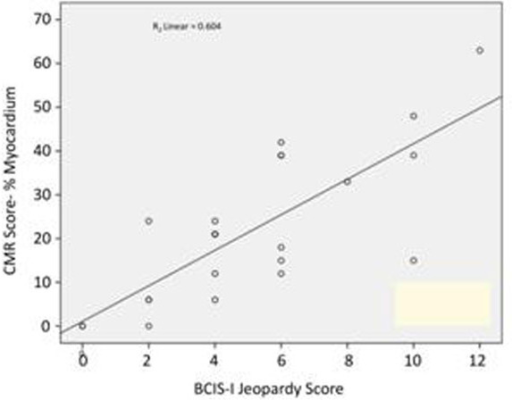 CMR Ischaemia/Scar Score versus JS kt TFE perfusion cases