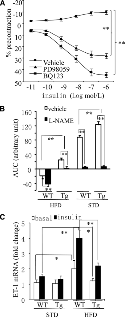 The insulin-induced ET-1–dependent contraction is suppressed in APPL1-Tg mice on HFD. A: Effect of insulin in mesenteric arteries of 16-week-old WT mice on HFD in the presence of the ERK1/2 inhibitor PD98059 (5 μmol/L) or the ET-1A receptor antagonist BQ123 (1 μmol/L). Data are expressed as percentage of the contraction to U46619. B: Effect of insulin in mesenteric arteries of 16-week-old APPL1-Tg and WT mice fed HFD or STD in the presence of l-NAME (100 μmol/L). Data are shown as area under the curve (AUC). C: The mRNA levels of ET-1 in mesenteric arteries from 16-week-old APPL1-Tg and WT mice fed STD or HFD were quantified by real-time quantitative-PCR and normalized against GAPDH. *P < 0.05, **P < 0.01 (n = 5–8).
