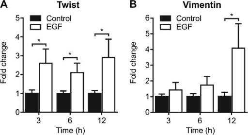 EGF-induced EMT in MDA-MB-468 breast cancer cells. MDA-MB-468 breast cancer cells were serum starved and treated with EGF (50 ng/mL) as indicated to induce EMT. A) Twist and B) vimentin mRNA expression were assessed using real time RT-PCR at 3, 6 and 12 h following EGF treatment. Bar graphs show mean ± S.D. for nine individual wells from three independent experiments. The effect of EGF at each time point was assessed using two-way ANOVA with Bonferroni's multiple comparisons post-tests. * P < 0.05.