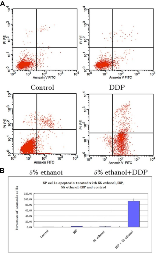 (A) Apoptosis analysis of SP cells treated with 5% ethanol, DDP, 5% ethanol–DDP, and control by FACS. (a) Apoptosis of control SP cells. (b) Apoptosis of 5% ethanol-treated SP cells. (c) Apoptosis of DDP-treated SP cells. (d) Apoptosis of 5% ethanol–DDP-treated SP cells. (B) Apoptosis rate of treated SP cells. The most significant apoptosis rate was found in 5% ethanol–DDP-treated SP cells.