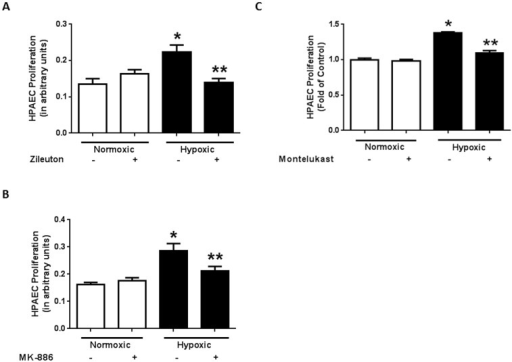Pharmacological inhibition of ALOX5 signaling attenuates hypoxia-induced endothelial proliferation.ALOX5 blockade by zileuton administration reduces hypoxia-induced endothelial proliferation when measured by MTT Assay (A, n = 4). FLAP inhibition by MK-886 attenuates endothelial proliferation following hypoxia exposure (B, n = 4) Pre-treatment with the cysteinyl leukotriene receptor antagonist, montelukast prevents endothelial proliferation during prolonged hypoxia exposure (C, n = 6) HPAEC were exposed to normoxic or hypoxic conditions for 72 hours. ALOX5 inhibitors, zileuton (10 µM) and MK-886 (0.5 µM) were administered during the final 24 hours of normoxia or hypoxia exposure. Cell proliferation was then assessed by MTT assay. * p<0.05 when compared to normoxic groups. ** p<0.05 when compared to untreated hypoxic groups.