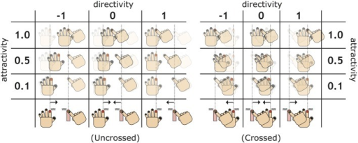 Diagram for understanding new measures: attractivity and directivity. The attractivity indicates how strongly two fingers are attracted after experiencing an illusion stage. The directivity measures the power balance of the attraction, focusing on the difference between the two types of proprioceptive drifts (PDs), whose sign is positive/negative if the PD of the administrating hand is larger/smaller than that of the receptive hand.