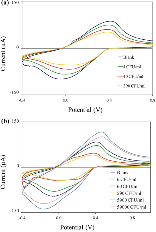 Cyclic voltammograms of immuno-c/sNP-cell solutions: (a) B. cereus cell concentrations ranging from 4 to 3.9 × 102 CFU/mL; and (b) E. coli O157:H7 cell concentrations ranging from 6 CFU/mL to 5.9 × 104 CFU/mL.