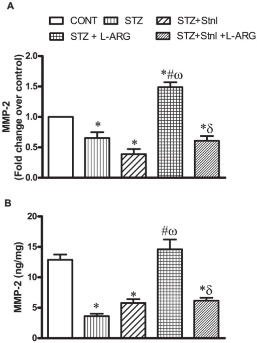 Effect of STZ alone or in combination with L-ARG or L-ARG + Stnl on metalloproteinase (MMP)-2 mRNA expression (A) and protein content (B).Data represent the means of six experiments ±SEM; *, #, ω and δP<0.05 compared with CONT, STZ, STZ+ Stnl and STZ+ Stnl + L-ARG, respectively, using one-way ANOVA followed by Tukey's Multiple Comparison Test.