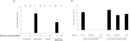 Treatment of naturally latent monocytes with MC1568 or VPA reduces reactivation.Monocytes from PBMCs of HCMV seropositive individuals were isolated by plastic adherence. Adherent monocytes were left untreated (no treatment, columns a and b), differentiated to reactivate virus (differentiated, columns c and d), treated with MC1568, (columns e and f) and cultured in the presence (+) or absence (−) of the residual PBMCs (after monocyte depletion). Additionally, wells of MC1568-treated monocytes, after removal of T cells, were also subsequently induced to differentiate (columns g and h). In all cases, any reactivated virus was quantified by fibroblast co-culture and staining for IE positive foci (A). Finally, CD14+ monocytes from PBMCs of two HCMV seropositive individuals were isolated, adhered to plastic and left untreated (none), treated with MC1568 or VPA for 24 h. The PBMCs left after CD14+ isolation were either left untreated (CD14+ depleted PBMC) or further depleted of T cells by CD3+ positive selection (CD14+/CD3+ depleted PBMCs). Subsequently, PBMCs were removed by washing and cells were differentiated and any reactivated virus was quantified by fibroblast co-culture and staining for IE foci (B). Standard deviations are shown and statistical significance was determined using the Student's t-test.