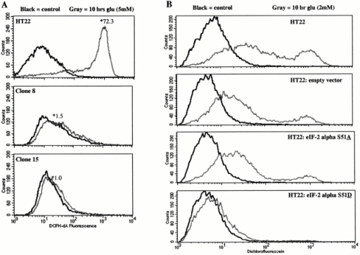 ROS and Ca2+ levels after exposure to glutamate. ROS levels were measured by flow cytometry using the fluorescent dye DCF. (A) ROS levels increase 72-fold (gray line) in wild-type HT22 cells exposed to 5 mM glutamate for 10 h. However, ROS levels do not increase in resistant clones 8 and 15 after 10-h exposure to glutamate. (B) ROS levels after exposure to glutamate are increased (gray line) in wild-type HT22 cells and in HT22 cells infected with empty vector or the S51A mutant of eIF2α. ROS levels do not increase in HT22 cells expressing the eIF2α mutant S51D when exposed to 2 mM glutamate for 10 h. 10,000 live cells were assayed, and the experiment was repeated two times with similar results. (C) Cytosolic Ca2+ levels were measured using flow cytometry and the ratiometric dye Indo-1. HT22 cells exposed to 5 mM glutamate for 10 h have a large increase in cytosolic Ca2+ compared with untreated cells. After glutamate exposure, resistant clones 8 and 15 maintain cytosolic Ca2+ levels similar to the wild-type untreated control. (D) HT22 cells exposed to 2 mM glutamate for 10 h have a large increase in cytosolic Ca2+. HT22 cells infected with the empty vector or the S51A mutant of eIF2 also show similar increases in Ca2+. The S51D mutant of eIF2α prevents the glutamate-induced increase in Ca2+ when stably expressed in HT22 cells. All samples were prepared in duplicate. 10,000 live cells were assayed in each experiment, and the study was repeated twice with similar results.
