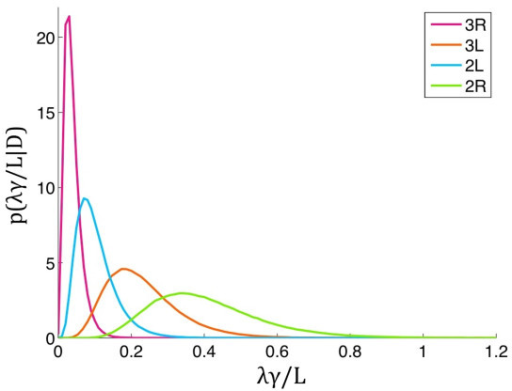 Chromosome arm-specific differences in rates of accumulation of disrupted gene blocks. X axis shows rates of accumulation of disrupted blocks per region length per unit length, z = (λj(diff) γj(diff))/L. Y axis shows a density of p(z/D); p--density, D--data.