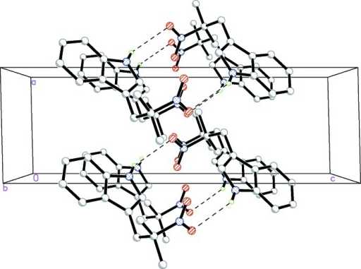 A view of the N—H···O hydrogen bonds (dotted lines) in the crystal structure of the title compound. H atoms non-participating in hydrogen- bonding were omitted for clarity.
