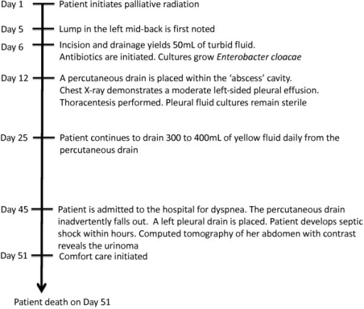 Timeline of clinical events.