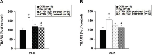 Effects of ATPH (A) and ATTN (B) on KA-induced increase in lipid peroxidation in OHSC. Lipid peroxidation was measured at 24 h recovery time after drugs treatment by TBARS assay as described in Methods. Results are expressed as percentage of control values and are means ± S.E.M. of 9 to 12 experiments. Asterisks (*) indicate statistically significant difference from control (* p < 0.05); Sharps (#) indicate statistically significant difference from KA-treated cultures (#p < 0.05).
