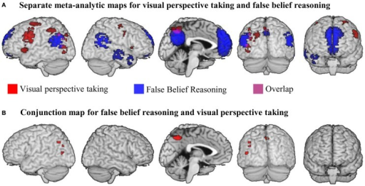 (A) Results of meta-analyses for false belief reasoning (blue) and visual perspective taking (red). Overlap between result maps is shown in purple. (B) Results of a conjunction analysis searching for brain areas active for false belief reasoning AND visual perspective taking. All maps were thresholded at voxel-wise threshold of p < 0.005 uncorrected and a cluster extent threshold 10 voxels.