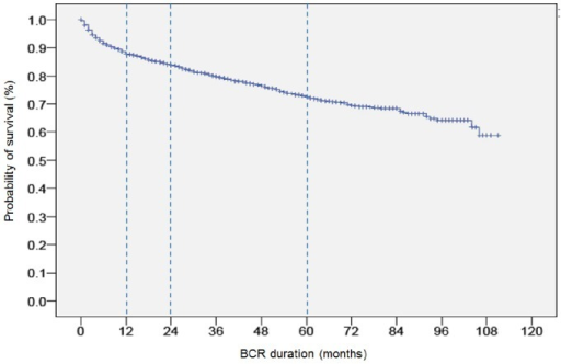 Biochemical recurrence (BCR)-free probability during follow-up after radical prostatectomy.
