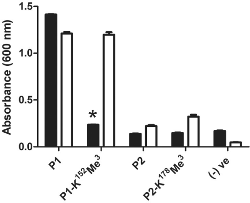 Leptospirosis patient serum reactivity against modified and unmodified versions of synthetic LipL32 peptides.Shown is the reactivity of pooled sera from laboratory-confirmed leptospirosis patients (black bars) and LipL32-specific polyclonal rabbit serum (white bars) to unmodified and tri-methylated (KMe3) versions of P1 and P2 peptides comprising experimentally-determined B-cell epitopes of LipL32 [36]. Two independent experiments were performed with reproducible results; the results from one representative experiment are shown. Error bars represent standard error of measurement from triplicate samples. For statistical analyses, the level of reactivity of patient sera against the unmodified version of P1 was compared to the level of reactivity against the P1 peptide containing a tri-methylation at position K152 (P1-K152Me3) using the Student's two-tailed t-test (*p<0.0001).