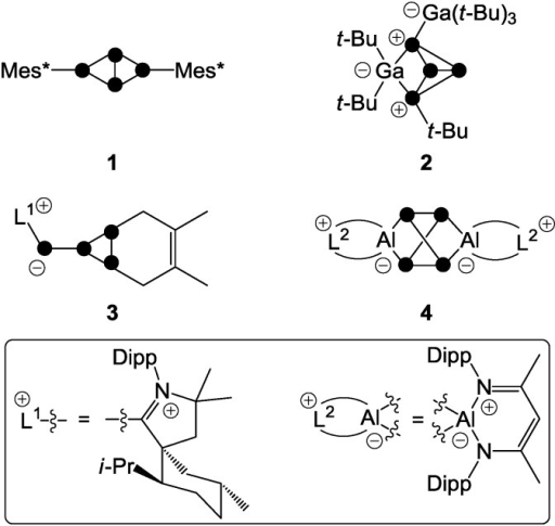 Examples of polyphosphorus compounds obtained by the functionalization of P4 by nucleophiles (1), electrophiles (2), predominantly nucleophilic ambiphiles (3), and predominantly electrophilic ambiphiles (4).