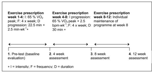 Schematic experimental time-line of the aerobic exercise training intervention programme.