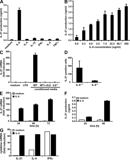 IL-6 is sufficient and necessary to induce IL-21 expression during the activation of naive and memory CD4+ T cells. (A and B) FACS-sorted CD4+ T cells were activated with anti-CD3 and anti-CD28 mAbs in the absence or presence of the indicated cytokines (A) or the indicated IL-6 concentrations (B). After 3 d, cell-culture supernatants were analyzed for IL-21 production by ELISA. The means ± SEM of three (A) or four (B) experiments are shown. (C) FACS-purified CD4+ T cells were activated with anti-CD3 and anti-CD28 mAbs in the presence of medium alone, LPS, conditioned media (CM) from LPS-stimulated mouse splenocytes, CM plus 10 μg/ml of a neutralizing anti–IL-6 (αIL-6) mAb, or CM from LPS-stimulated IL-6−/− splenocytes. IL-21 expression was measured by quantitative real-time RT-PCR. One representative experiment out of two is shown (error bars represent SD). (D) C57BL/6 and IL-6−/− mice were immunized s.c. with 200 μg OVA in CFA. CD4+ T cells prepared from spleens and lymph nodes were analyzed 6 d later for the frequency of IL-21–producing cells by ELISPOT. The means ± SD of three immunizations are shown (P < 0.05). (E) FACS-purified CD4+ CD25− NK1.1− CD44low naive cells were activated with anti-CD3 and anti-CD28 mAbs in the absence or presence of IL-6 for the indicated periods of time. IL-21 expression was measured by quantitative real-time RT-PCR. One representative experiment out of two is shown (error bars represent SD). (F) CD4+ T cells were isolated from AND TCR transgenic mice, and activated with 5 μM cyt c peptide and APCs in the absence or presence of IL-6 for the indicated periods of time. IL-21 production was examined by ELISA. One representative experiment out of two is shown (error bars represent SD of a triplicate determination). (G) FACS-purified CD4+ CD25− NK1.1− CD44high memory cells were activated with anti-CD3 and anti-CD28 mAbs in the absence or presence of IL-6 for 24 h. Cytokine expression was measured by quantitative real-time RT-PCR. Values are presented as fold induction over naive CD4+ T cells activated for 24 h. One representative experiment out of two is shown.