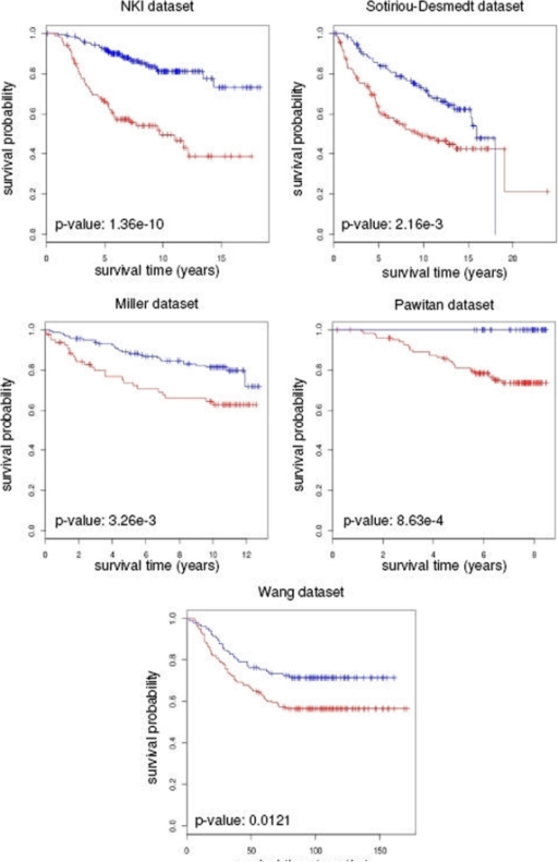 Predictive power of the DM signature.Kaplan-Meier analysis using the DM signature shows significant                            differences in survival of patients from five independents breast cancer                            datasets.