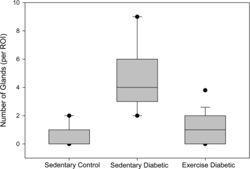 Number of glands. The box plot depicts the median (bold line within the box) number of glands per region of interest (ROI) within the endometrial stroma and the 25th and 75th percentiles (box) between sedentary control, sedentary diabetic and exercised diabetic animals. Vertical lines (whiskers) indicate the 5th and 95th percentiles with outliers shown by the circles.