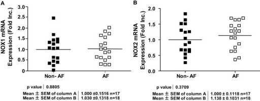 Expression of different NOX isoforms in patients with and without atrial fibrillation. (A) NOX1 mRNA expression. (B) NOX2 mRNA expression. NOX1 or NOX2 mRNA expression was determined by RT-PCR analysis and normalization to endogenous amplicon of GAPDH.